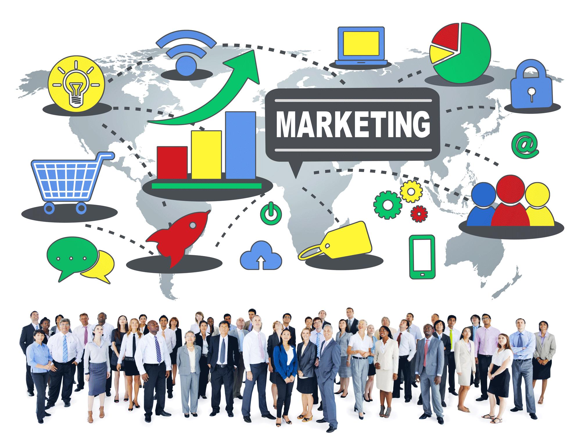 tampa digital marketing company