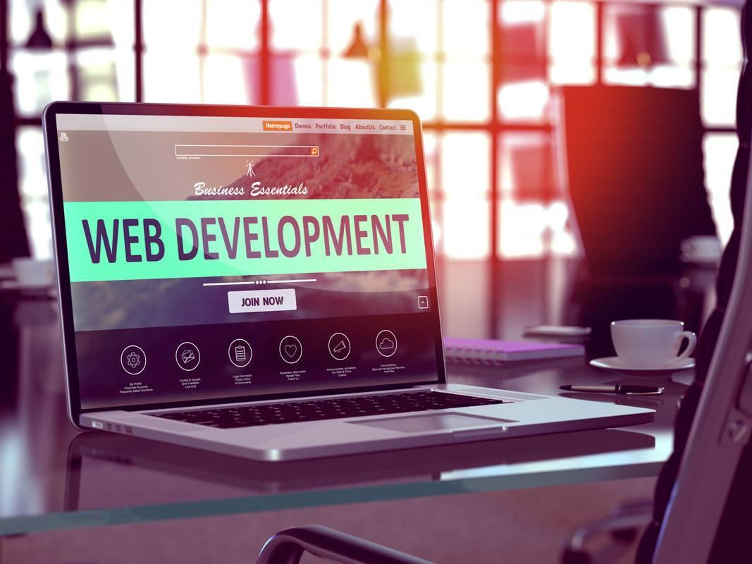 web-development-tampa