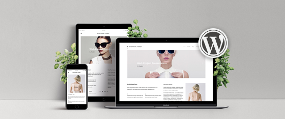 Custom WordPress Website-Design