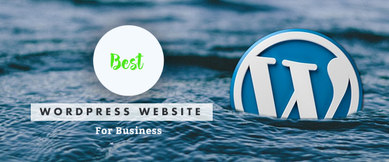 Best WordPress Websites For Business