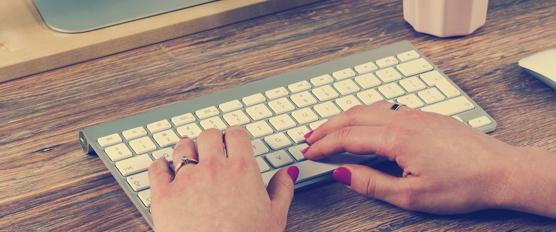 web search marketing tampa