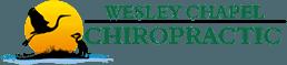 Wesley Chapel Chiropractic