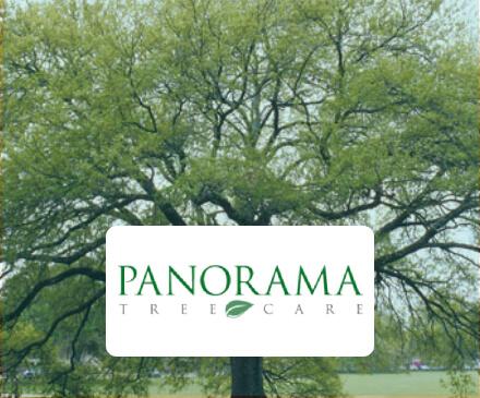 panorama-tree-care